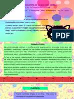 presentacionproyecto-160629165623