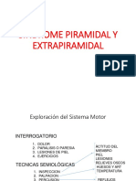 Sindrome Piramidal y Extrapiramidal Final