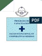 Salud Ocupacional Chorolque - Copia