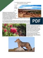 San Pedro de Atacama Articulo