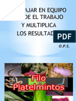 Exposicion de Platelmitos