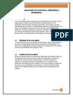 Identificación_macroscópica_de_rocas[1].docx