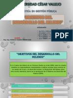 Diapositivas Maestria Objetivos Del Milenio