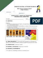 Protocolo_P-1 Medidas de Seguridad en El Laboratorio de QUINTO