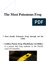 The Most Poisonous Frog.pptx