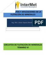 VI - CIRCUITOS DE FLOTACION.pdf