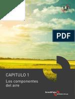 SPA Los Componenetes Del Aire