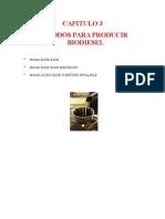 Documento Madre Biodiesel Cap III y IV