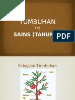 TUMBUHAN TAHUN 1