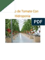 Curso Tomate Con Hidro..