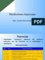 4.- metabolismo