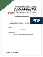 184358329 Informe de Dilatacion Termica de Solidos y Liquidos