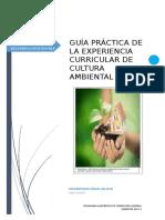 _GUÍA_PRÁCTICA_8.doc