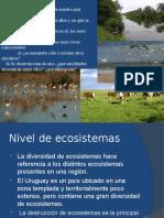 Biodiversidad Riqueza Patrones Distribución 2016 Para El Blog (1)