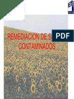 Remediacion IPN 03-10-10