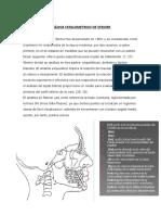 Análisis Cefalometrico de Steiner y Mc Namara - Orto