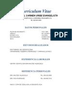 Curriculum Maria Del Carmen Uribe Evangelista
