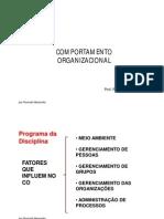 Comportamento Organizacional Parte 1