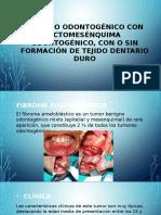 Expo Patoestomato