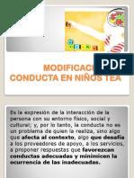 MODIFICACION DE CONDUCTA EN NIÑOS TEA.pptx