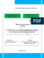 Audit des Immobilisations  Memoire