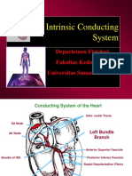 K-22 Fisio Intrinsic Conducting System_CVS-K22