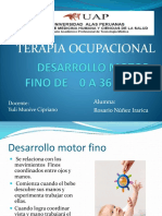 Clase 10 Motor Fino 0 36 Meses Rosario