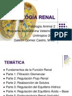 Fisiologia Sistema Renal GGC 1109