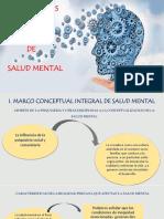 Lineamientos de Politica de Salud Mental