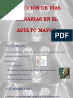 Infeccion a Las Vías Urinarias (Clase)