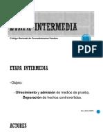 ETAPA INTERMEDIA.pptx