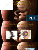 CRECIMIENTO Y DESARROLLO FETAL.pptx
