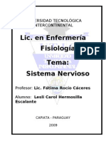 Sistema Nervioso Periferico y Medula Espinal