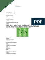 ejercicios de futbol soccer