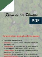 Reino de Las Plantas 3