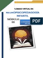GUÍA DIDÁCTICA Diplomado Neuropsicopedagogìa