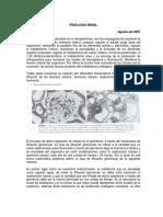 1.- Fisiologia renal.pdf