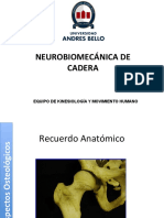 6.- Neurobiomecanica de Cadera