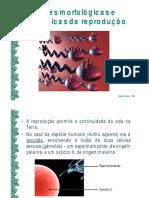 1 Bases Morfolc3b3gicas e Fisiolc3b3gicas Da Reproduc3a7c3a3o