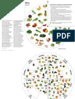 A3 Food Wheel.pdf
