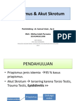 documents.tips_priapismus-akut-skrotum.ppt