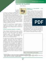 3.+Fuentes+de+Magnesio-2