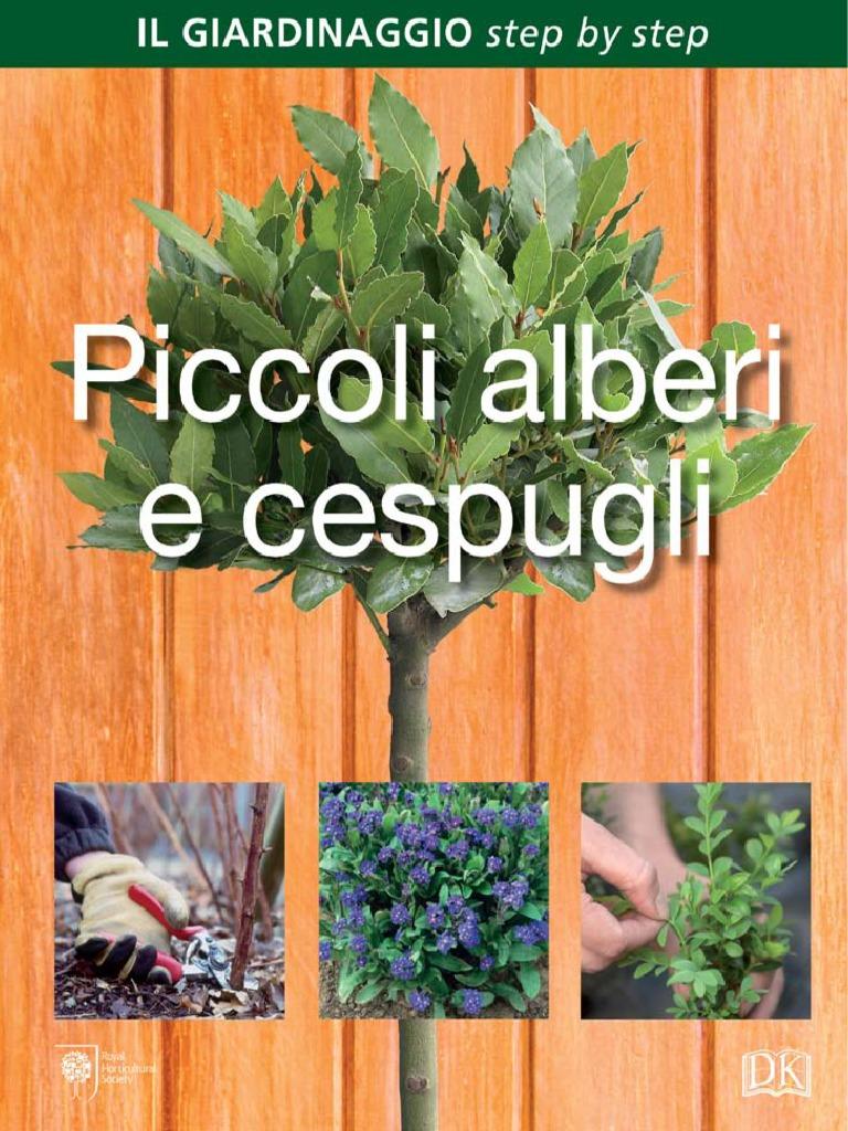 Alberelli Ornamentali Da Giardino piccoli alberi e cespugli di simon akeroyd 2016 pg 164