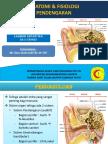 PPT Anatomi pendengaran.pptx