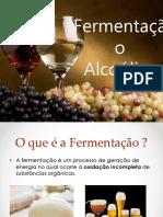 fermentacao alcoolica