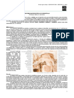 NEUROANATOMIA 10 - Macroscopia do Diencéfalo - MED RESUMOS 2012.pdf