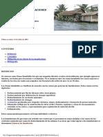 Control de Inundación