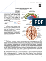 NEUROANATOMIA 15 - Estrutura e Funções dos Núcleos da Base e do Centro Branco Medular do Cérebro (2012).pdf