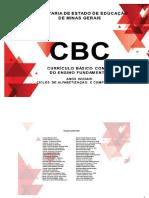 cbc-anos-iniciais.docx