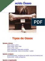 Tecido Òsseo e Osteogênese
